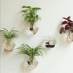 2 Packs Home Decor Wall Accessories Geometric Hexagonal Glas