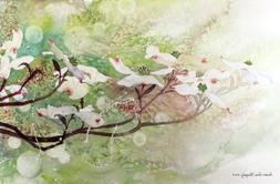 Dogwood in Spring 2, Giclée Print of White Flower Blossoms,