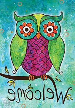 Toland Home Garden Rainbow Owl 12.5 x 18 Inch Decorative Col