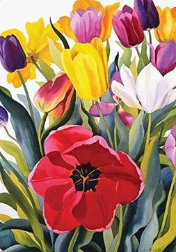 Toland Home Garden Tulip Garden 28 x 40 Inch Decorative Colo