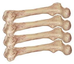 Crazy Bonez Bare Bones Set