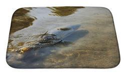 Gear New Bath Rug Mat No Slip Skid Microfiber Soft Plush Abs