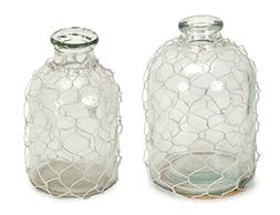 Set of 2 Clear Glass with Wire Netting Decorative Bottle Vas