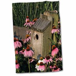 3dRose Danita Delimont - Bird House - Bluebird nest box on f