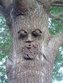 DIRECT SOURCE FOR WHISTLIN PETE TREE PEEPLE FOREST FACE  PEO