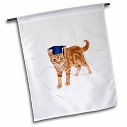 Doreen Erhardt Graduation Collection - Orange Tabby Cat wear