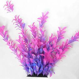 egrow 1000 pcs aquatic water seeds aquarium