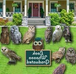 Graduation Yard Decoration- Look Whoooo Graduated - Owls - F
