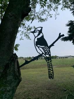 Hammer In Bird Bluejay Yard Garden Art