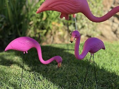 4 Pack Plastic Flamingo Yard Outdoor Garden Decor Art Statue