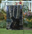 NEW Toland - Bear Picnic - Outdoors Nature Grizzly Birch For
