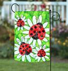 Toland Ladybugs and Daisies 12.5 x 18 Colorful Ladybug Flowe