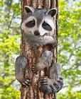 Cute Animal Tree Hugger Raccoon Yard Garden Art Outdoor Coun