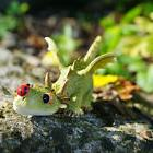 Miniature   Fairy Garden  Dragon Playing with Ladybug TO 441