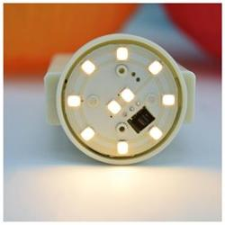 MoonBright™ 10-LED Wireless Remote Controlled Paper La