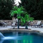 Realistic Palm Tree Commercial LED Lighted Outdoor Pool Yard