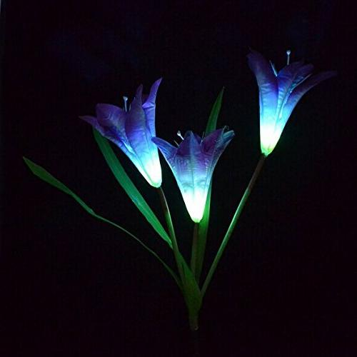 solar power purple lily flower