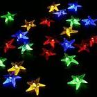 Starfish Christmas Wedding Party Decora Color Outdoor Fairy