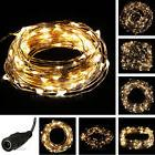 Warm White 10M/33FT 100LED Copper Wire String Party Decorati