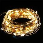 New Warm White Copper Wire 100LED 33 Feet String Party Decor