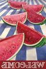 Watermelon Stripe Summer Garden Flag by Evergreen