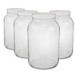 Paksh Novelty Wide Mouth 1 Gallon Clear Glass Jar Plastic Li