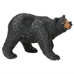 Safari Wild Safari North American Wildlife Black Bear