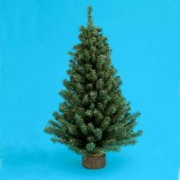 "Kurt Adler 18"" Miniature Pine Christmas Tree"