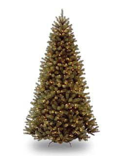 National Tree 7.5 Foot North Valley Spruce Tree with 550 Cle