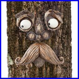 old man tree hugger garden peeker yard
