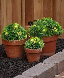 Set of 3 GREEN Solar Light Half Ball Garden Ground Plants Ya