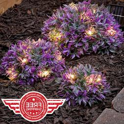 Set of 3 PURPLE Solar Light Half Ball Garden Ground Plants Y