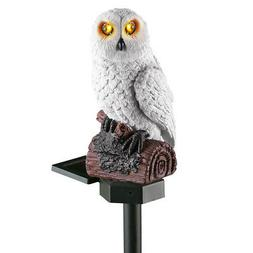 Solar White Hooting Owl Garden Decor Yard Stake, by Collecti