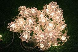 LED String Lights 4M/13feet 40 LED Lotus Flower for Chrismas