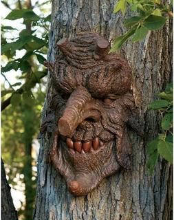 Tree Face Sculpture Spirit Poison Oak Magical Outdoor Old Ma
