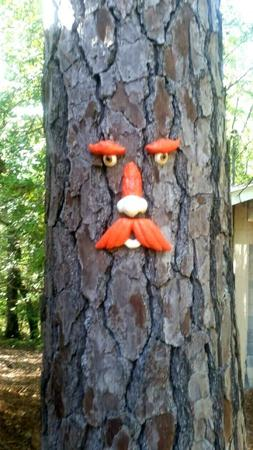 Tree Faces R&D Blow-Out Sale 39% OFF FREE SHIPPING