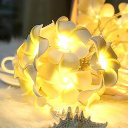 Vintage Frangipani Flower LED Fairy Light String Battery Chr