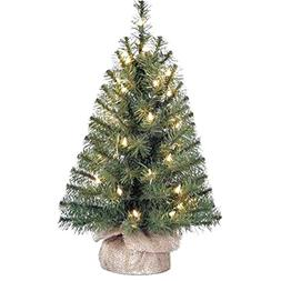 Holiday Time Xmas Pre-Lit 2' Noble Fir Artificial Trees, Cle